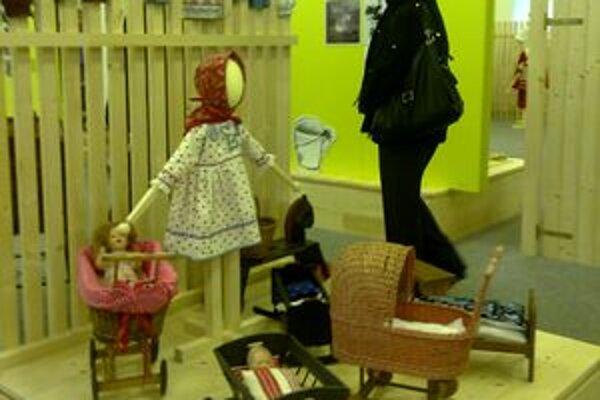 Výstava potrvá do júla 2011.