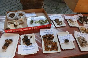 Tohtoročná výstava húb v Malinovej.