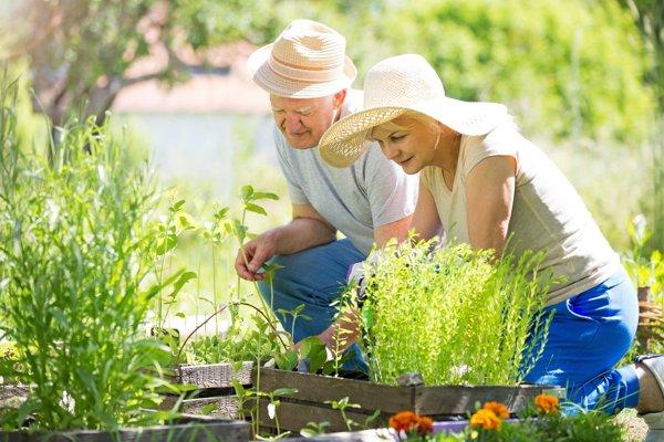Počet ľudí starších ako 65 rokov sa v najbližších päťdesiatich rokoch zdvojnásobí.
