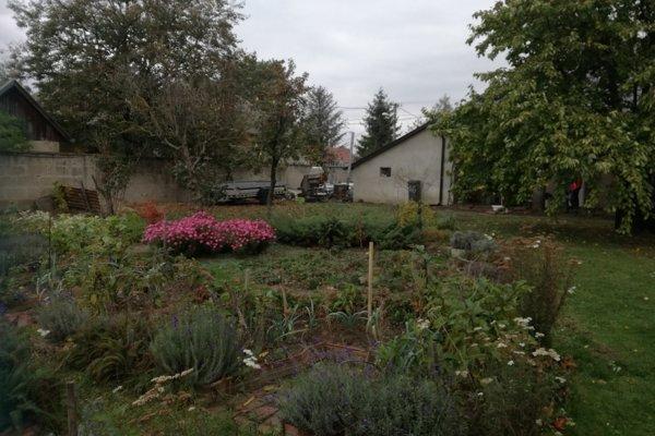 Prírodná záhrada je chápaná ako ekosystém, kde sa jednotlivé súčasti navzájom podporujú.