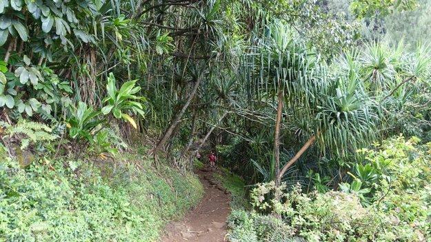 Turistický chodník Kalalau Trail