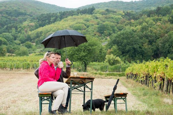 Na víne priamo vo vinici