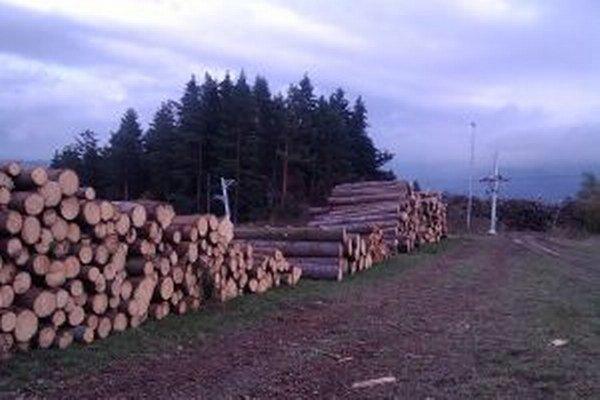 Ľudí zaujíma, prečo je Háji toľko vyrúbaných stromov. Majiteľ pozemkov vysvetlenie nepodal.