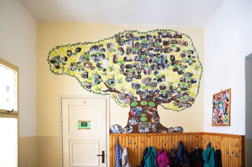 Škola v Banskej Štiavnici je v rámci projektu Zelená škola ukážkovou.
