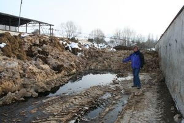 Starostka Trsteného Anna Naďová  sa chodí každý deň pozerať, ako to v okolí vyzerá. V silážnych jamách je okrem kalov aj maštaľný hnoj. Tekutina, ktorá preteká na povrch, je v jamách aj mimo nich.