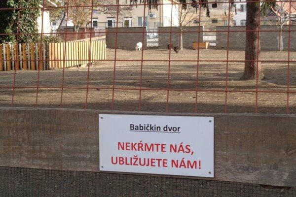 Zákaz kŕmenia zvieratiek návštevníci nerešpektujú.