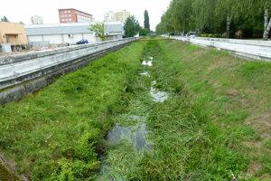 Podlužianka: hlodavce vodné toky obľubujú.