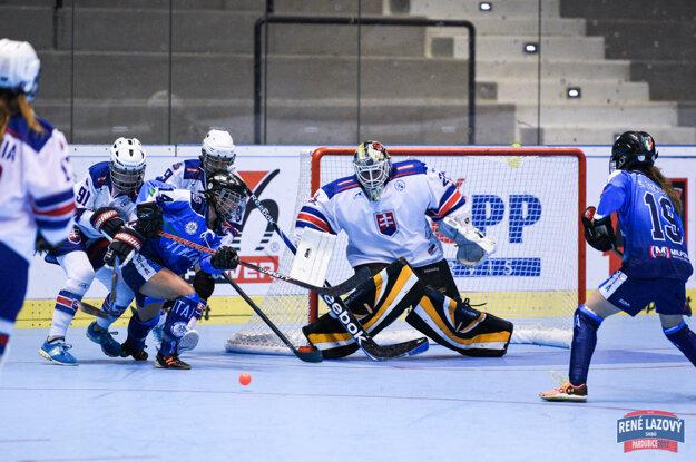 Daniela Zuziaková v reprezentačnom hokejbalovom drese.