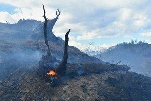 Požiar pri Kravanoch vypukol v nedeľu okolo 9.30 hod.
