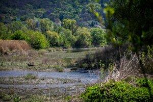 To, čo na pohľad vyzerá ako neupravená krajina, je to najlepšie a najprirodzenejšie prostredie pre rieku.