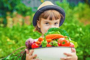 Škola môže byť aj medzi zeleninou a kvetmi.