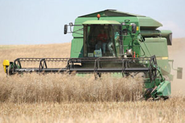 Nízke sú nielen hektárové výnosy ale i kvalita úrody je horšia ako po iné roky.