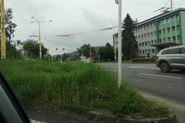 Vysoká tráva bráni vo výhľade vodičom na križovatke Požiarnická - Obrancov mieru.
