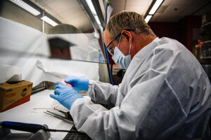Výskumníci musia na výskum mozgov získať povolenie zosnulých.