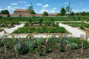 V Holíči budú pokračovať v revitalizácii bylinkovej i zámockých záhrad.