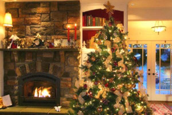 Príčinu, prečo sa práve ihličnatý stromček stal symbolom Vianoc, nepoznáme.
