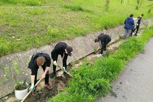 Dobrovoľníci čistili svoje mesto.