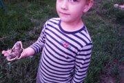 Päťročnému Lukáškovi prekryl najväčší motýľ celú dlaň.