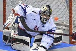 Patrik Polc v zápase Majstrovstiev sveta v hokejbale mužov Slovensko – Fínsko.