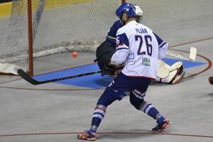 118009813c0fb MS v hokejbale: Momentky zo zápasu Slovensko - Taliansko (9 fotografií)
