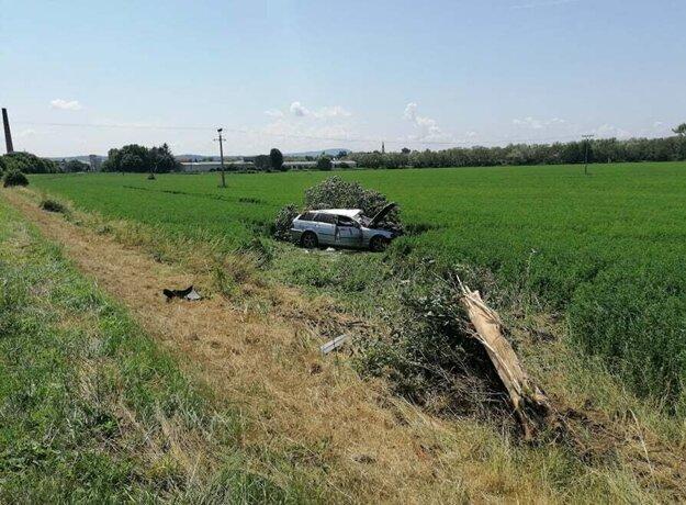 Auto skončilo v poli. Strom s ním.