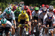 Na snímke v strede v žltom drese vedúceho pretekára Francúz Julien Alaphilippe (Deceuninck-Quick Step) na čele pelotónu na trati desiatej etapy pretekov Tour de France z Saint-Flour do Albi (217 km) 15. júla 2019. Na snímke tretí zľava v zelenom drese lídra bodovacej súťaže Slovák Peter Sagan.