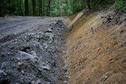Mestské lesy prechádzajú kompletnou úpravou ciest. Využila sa pritom rúbanina z razenia tunela.
