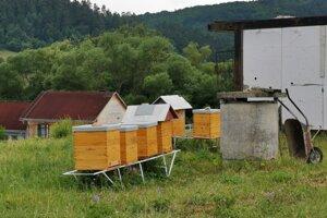 Prvých sedem včelích rodín v mestskom včelíne.