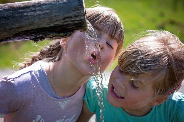 Pri vysokých teplotách je dôležité dbať na pitný režim.