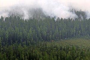 Požiar lesa v Rusku.