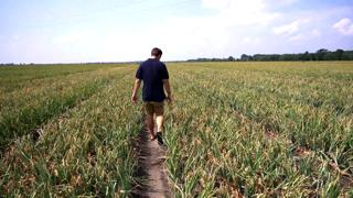 Klimatická zmena: Vďaka zavlažovaniu zbiera úrodu dvakrát ročne (video)