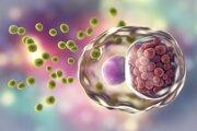 Trojrozmerná ilustrácia baktérie chlamidia trachomatis.