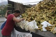 Prežije Latinská Amerika bez banánov?