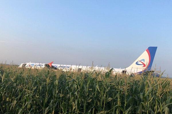 Lietadlo pristálo v kukuričnom poli. Jedna z pasažierok to niesla ťažko...