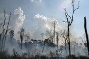 Od januára do augusta zaznamenali takmer 73.000 požiarov.