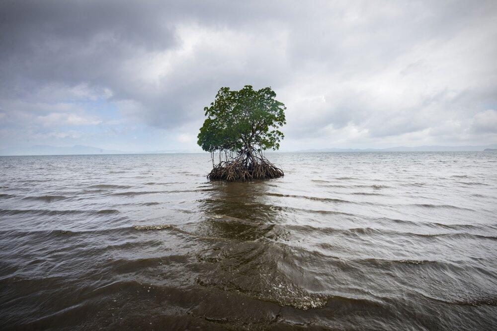 Fidži. Pobrežie Vunidoloa je v dôsledku stúpania mora vážne narušené. Vunidoloa sa nachádza v zálive Natewa na Viti Levu, hlavnom ostrove Fidži. Vunidoloa má 140 obyvateľov a je často zaplavená v dôsledku stúpajúcej vodnej hladiny. Situácia sa stala natoľko vážnou, že vláda sa rozhodla presídliť celú dedinu. Bohužiaľ, dané miesto bolo zle naprojektované a začalo podliehať erózii ešte pred tým, než sa tam ktokoľvek nasťahoval.