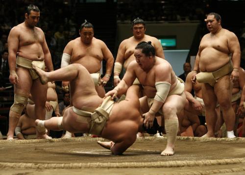 sumo2_reuters.jpg
