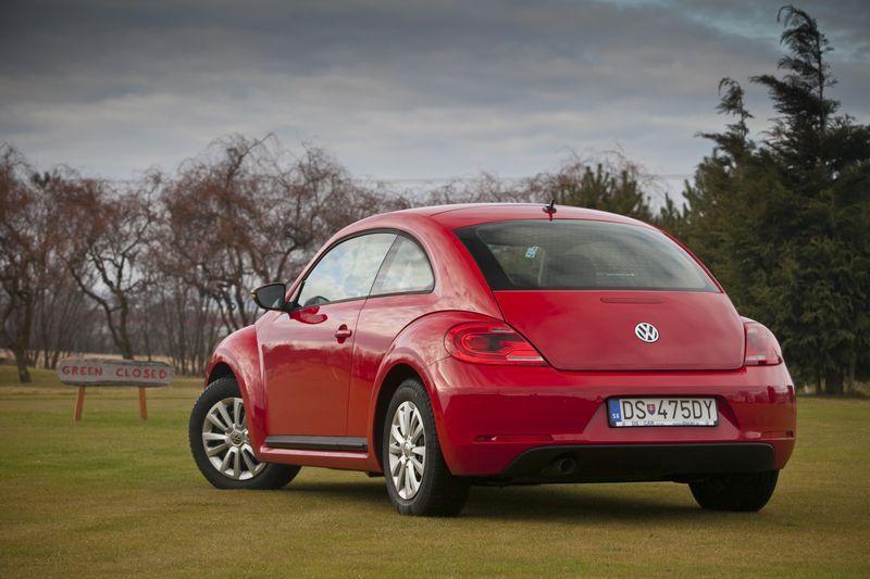 13_beetle_big.jpg