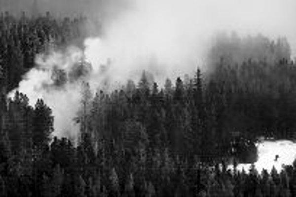 Kanadský les. Našťastie nejde o požiar, ale o snežnú hmlu, vytvorenú vetrom. ILUSTRAČNÉ