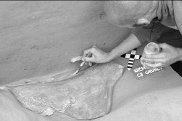 Mamutej lopatke, ktorá zakrývala Hrob 1, vďačíme za vysokú zachovanosť pozostatkov novorodencov-dvojičiek.