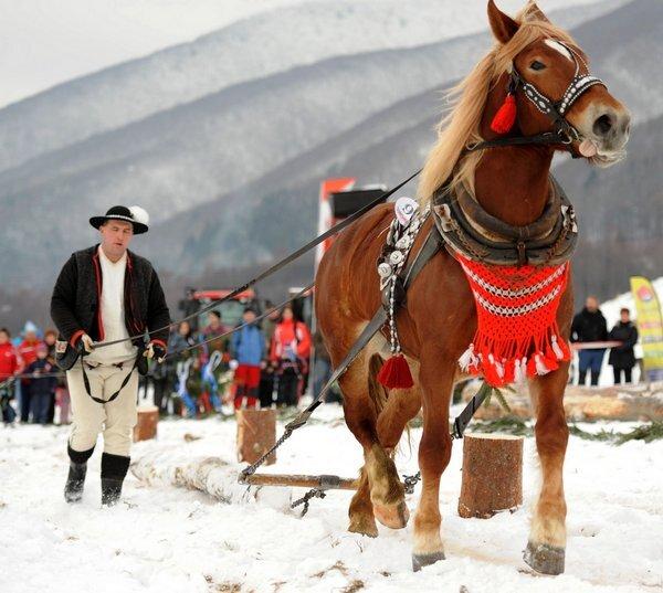 furmanske-preteky-turcianske-klacany-tas_r4162_res.jpg