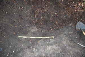 Časti tela našli po rokoch.