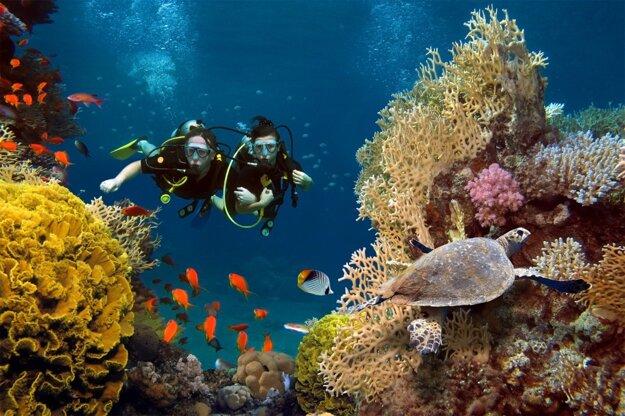 Potápanie na Maldivách je zážitok