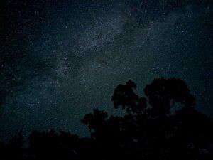 Nočný záber, ktorý urobil fotoaparát Pixel 4.