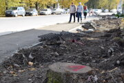 V Čadci vyrúbali 17 stromov. Vedenia mesta o tom nevedelo.