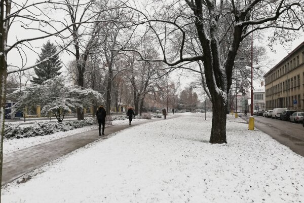Prvý sneh v Trnave