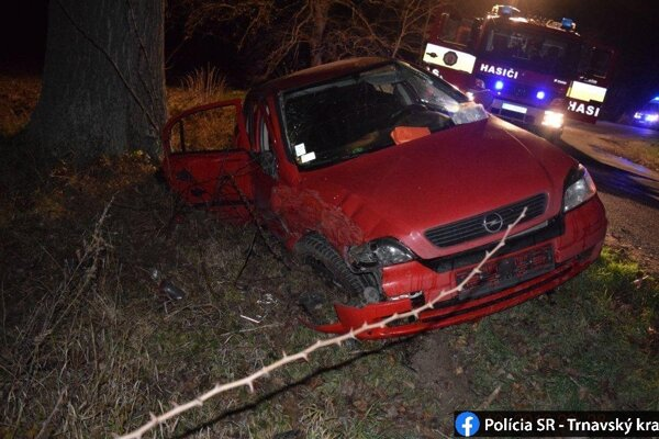 Mladý vodič nezvládol zákrutu a narazil do stromu.