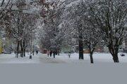 Mesto spustilo verejné pripomienkovanie projektu revitalizácie parku ešte vlani v decembri.