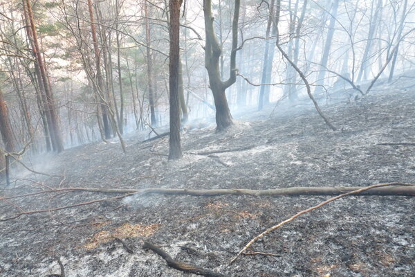 Les horel v ťažko dostupnom teréne.