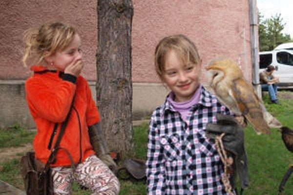 V základnej škole v Štiavnických Baniach sa vyučuje sokoliarstvo. Pre verejnosť je otvorená aj v lete.